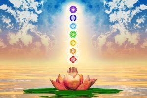 Heiliger Lotus und Chakren